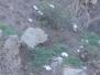Atomic Tombstones - January 9, 2008