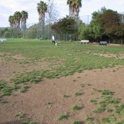 Dog-Park-12