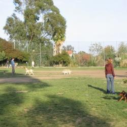 Dog-Park-18