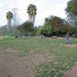 Dog-Park-5