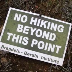 2007 Brandeis-Bardin by William Preston Bowling 1