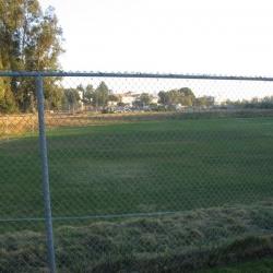 Brentwood-School-65.JPG
