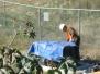 VA Nuclear Dump Second Phase Testing 12-8-09