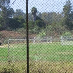 VA-athletic-fields-1