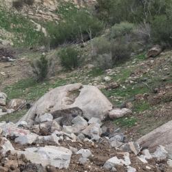 Chumash acorn grinding stones Jan 25 2015 3