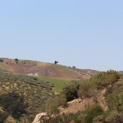 Wayne Fishback Browns Canyon March 28 2015 11