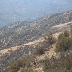 Wayne Fishback Browns Canyon Sept 24 2015 20