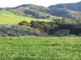 KB Home plans to build 461 homes in Runkle Canyon, adjacent to the highly polluted Rocketdyne site.