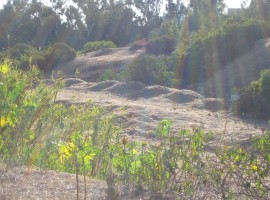 Mysterious Mounds – December 2, 2006