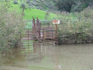 Runkle Canyon corral under waters protected by Clean Water Act