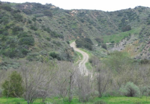 Road to Rocketdyne heads up out of Runkle Canyon in the Simi Hills