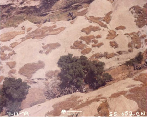 Barrels dumped outside of Area IV - 1979