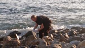 EnviroReporter Michael Collins sampling Pacific waters