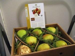 12-18-13 South Oregon Pears