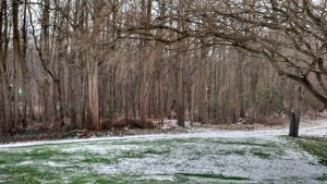 Dec 28 2015 SW Michigan freezing rain-sleet