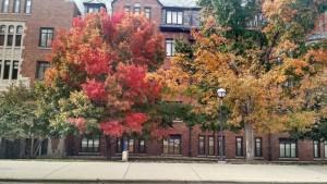 University of Michigan Fall 2015
