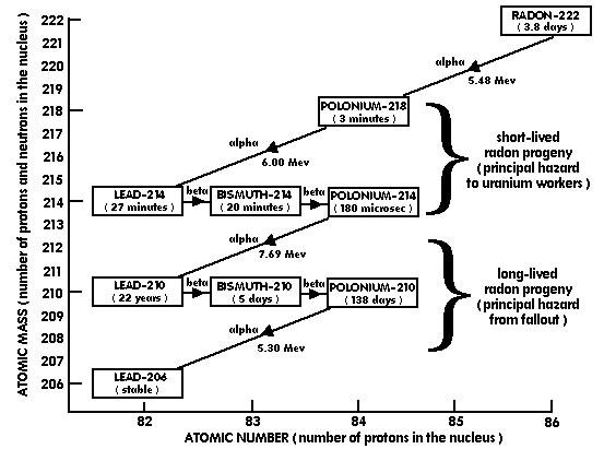 Radon Progeny Risk? December 15, 2011