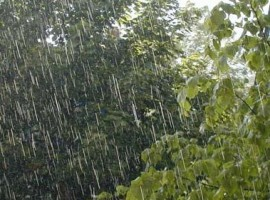 HOT Michigan Rain 12/30/11 Pt 1