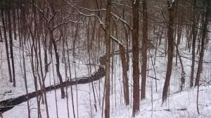 Michigan snow December 2012