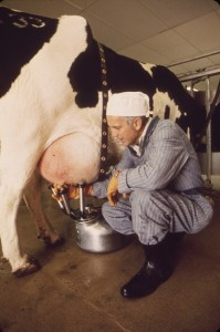 EPA milking and testing of milk for radiation