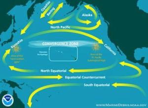 NOAA Pacific Ocean currents