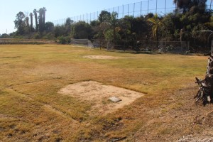 Brentwood School's southern athletic field has high chloroform gas in the grass