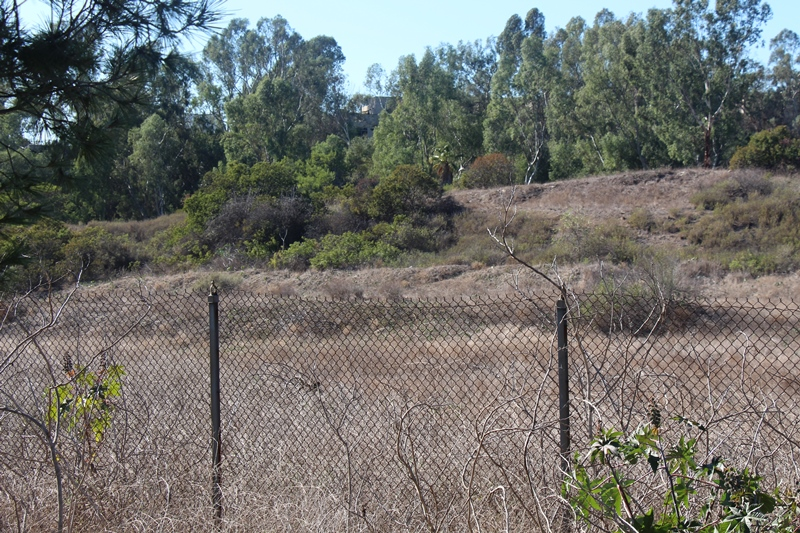 The mysterious mounds covered in brush with tritium 2015