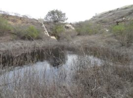 March 2014 - Sodium Reactor Experiment Pond where the water has never been tested