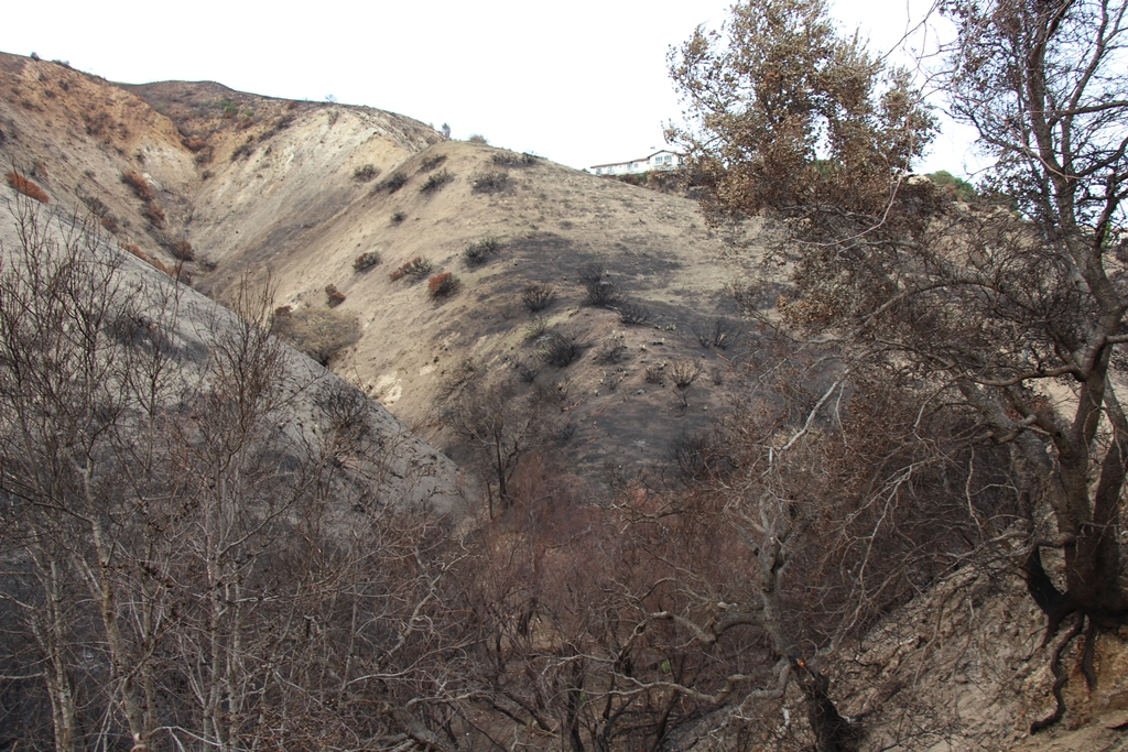 Rocketdyne-Woolsey Fire ash on burnt Malibu hillside adjacent Malibu Temple
